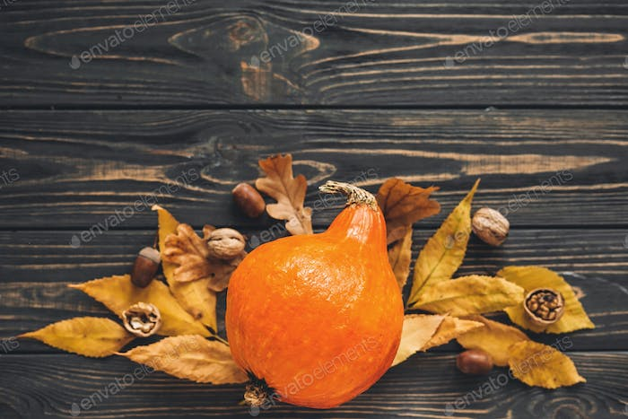 Beautiful pumpkin with bright autumn leaves, acorns, nuts on wooden rustic table