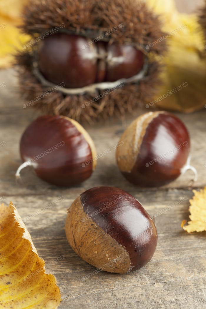 Whole sweet chestnuts