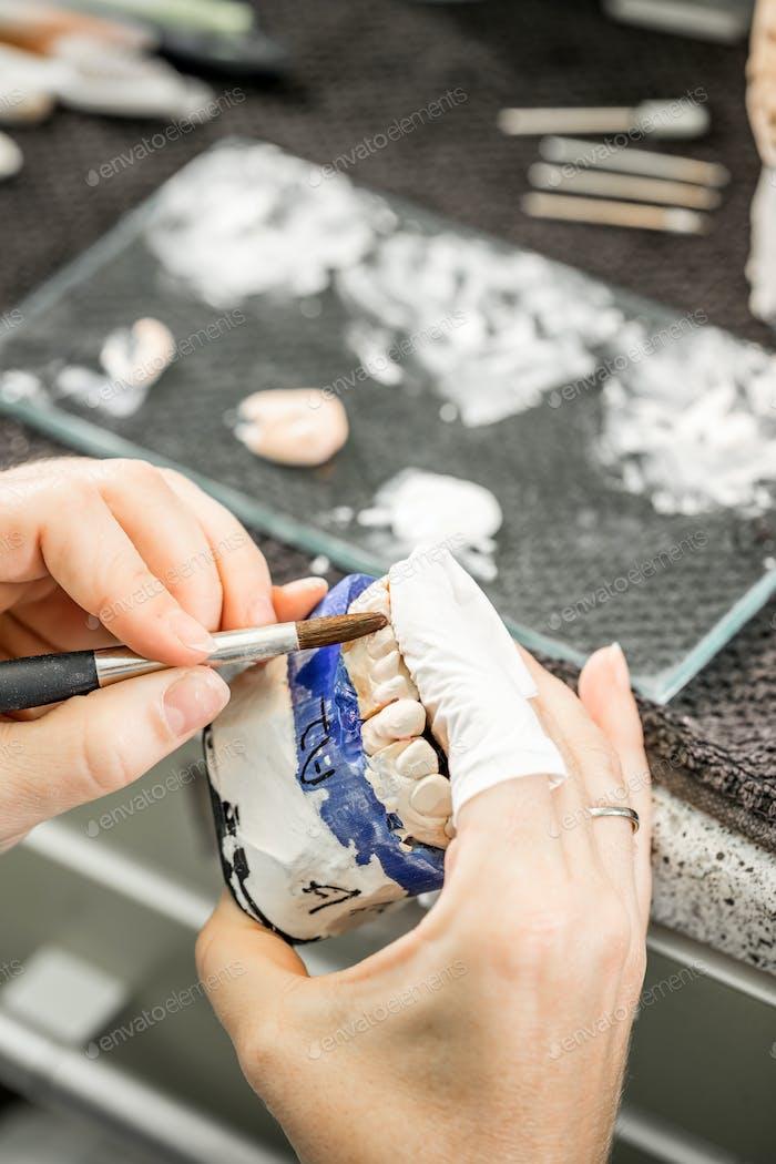 Woman hand painting denture