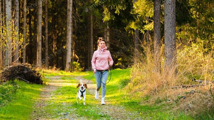 Mujer joven y perro corriendo juntos en el campo en el bosque. Alegre femenino ejercicio al aire libre con