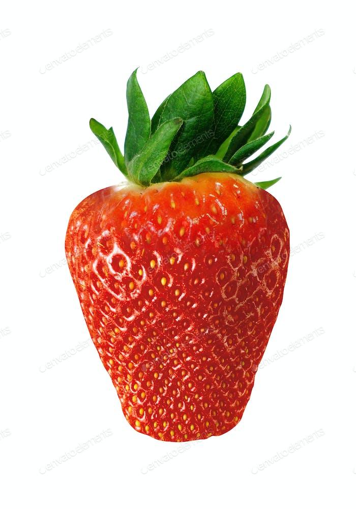 Erdbeere isoliert auf weiß
