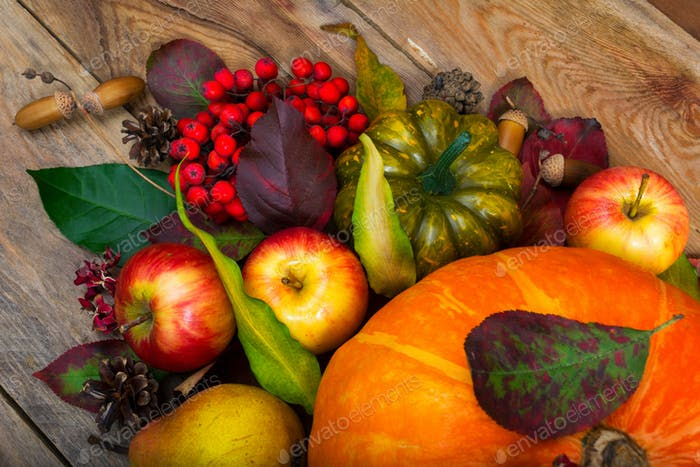 Thanksgiving background with pumpkin, apples, rowan, green squas