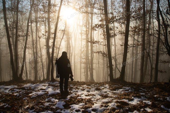 Einsamer Reisende im Nebelwald