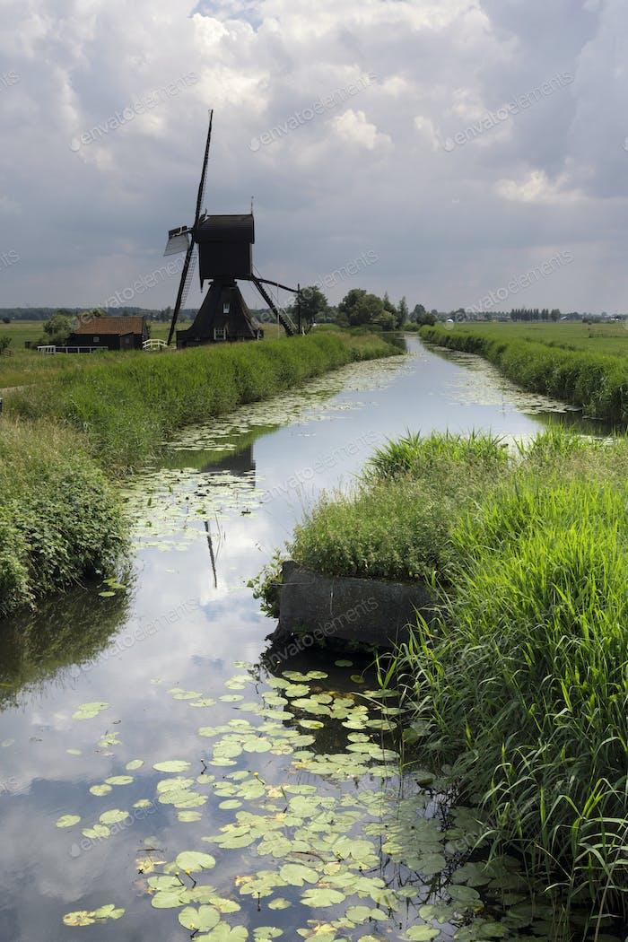 The Scheijwijkse windmill