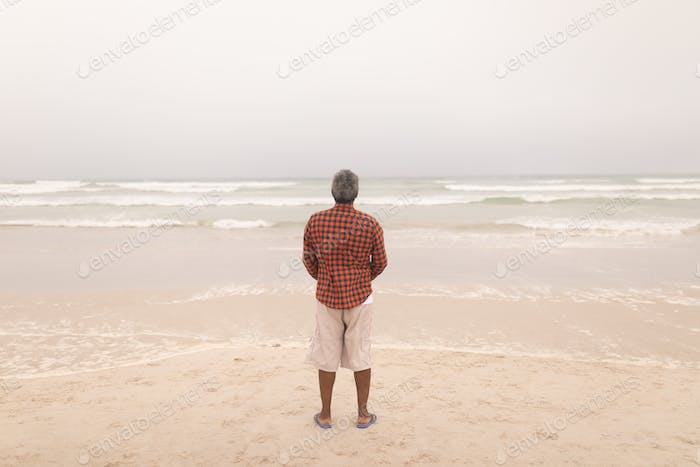 Rear view of senior man standing on beach on a cloudy day