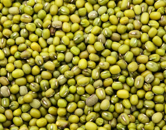 Mung green bean