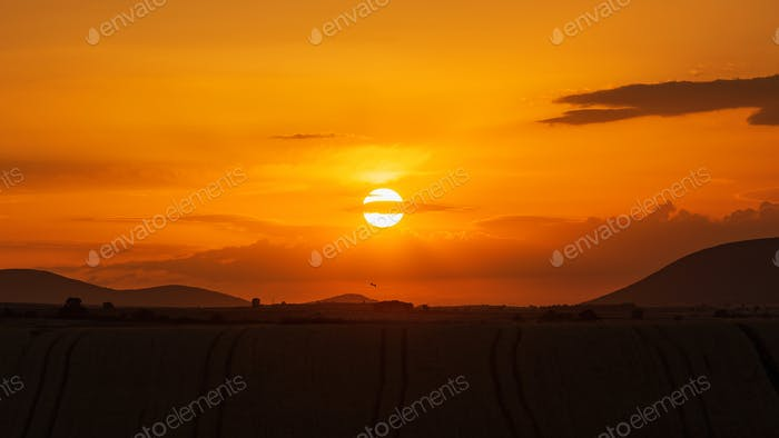 Setting Sun Over The Fields