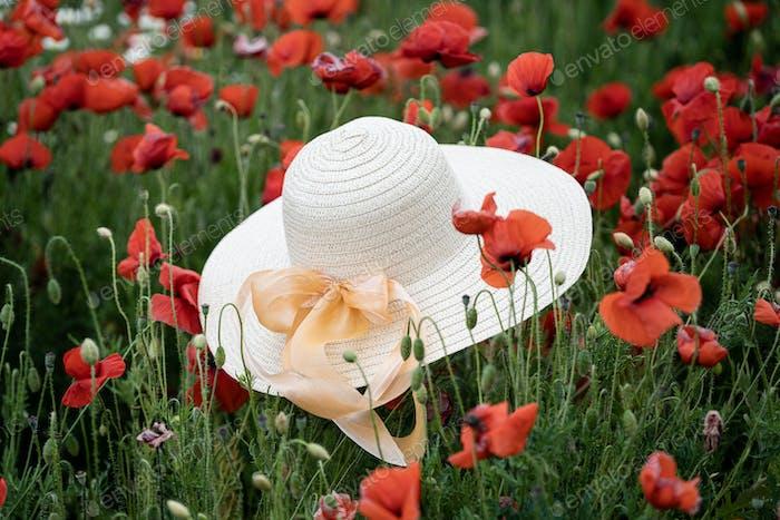 woman wicker hat in field with red poppy flowers