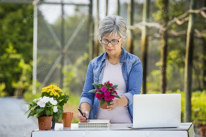 Arbeiten in einem Blumenladen