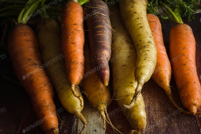 Heirloom Rainbow Carrots