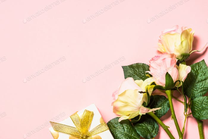 Pink roses flowers on a pink background