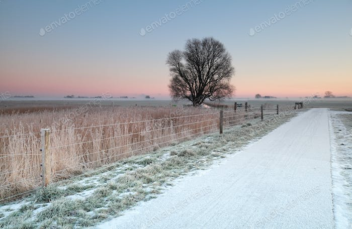 cycling road in snow at sunrise