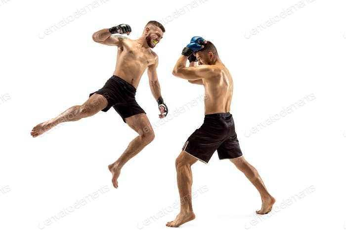 Two professional boxers boxing isolated on white studio background