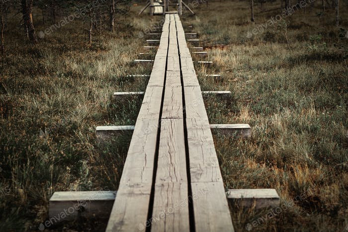 Wooden footpath on a beautiful autumn meadow in forest.