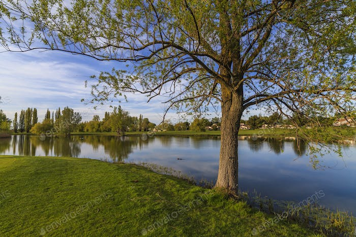 Magic pastoral landscape with scenic views of the lake and the green trees.