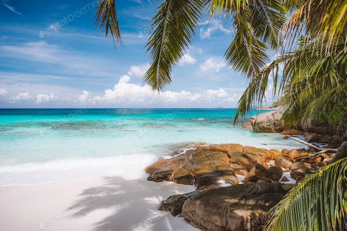 Vacation holiday landscape of prisine tropical paradise beach with crystal clear blue water, powdery