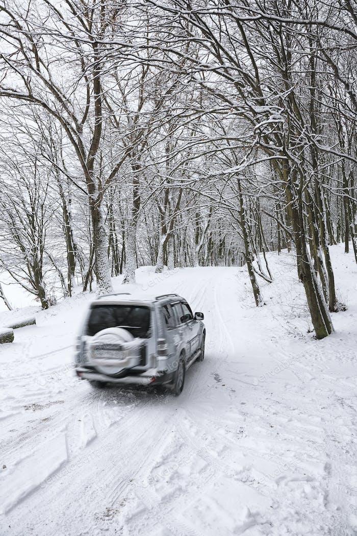 Einzelwagen auf einer Winterstraße im Wald