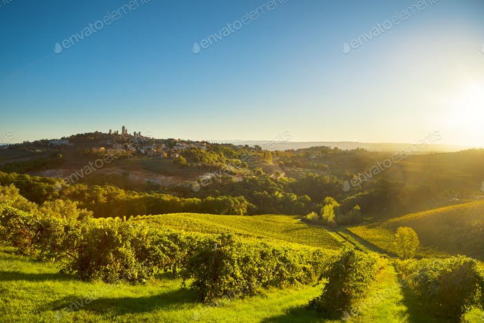 San Gimignano panoramic medieval town towers skyline and vineyar