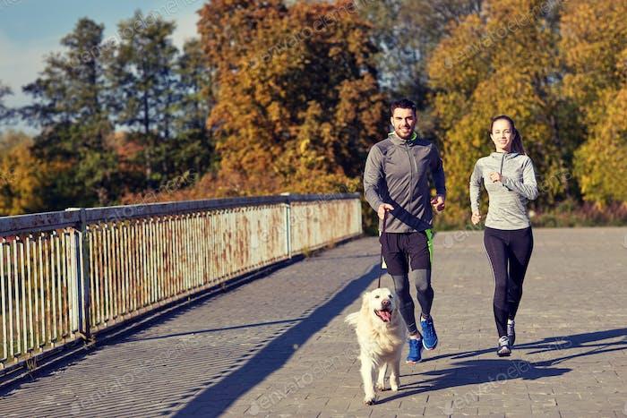 glückliches Paar mit Hund läuft im freien