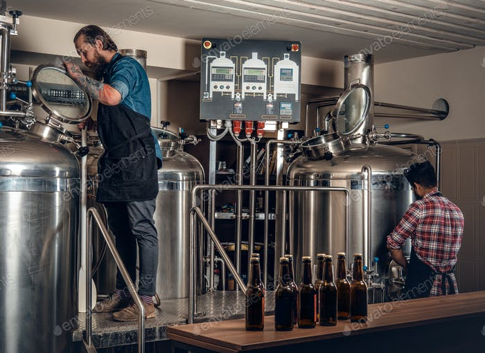 Two  men brewing beer in the craft microbrewery.