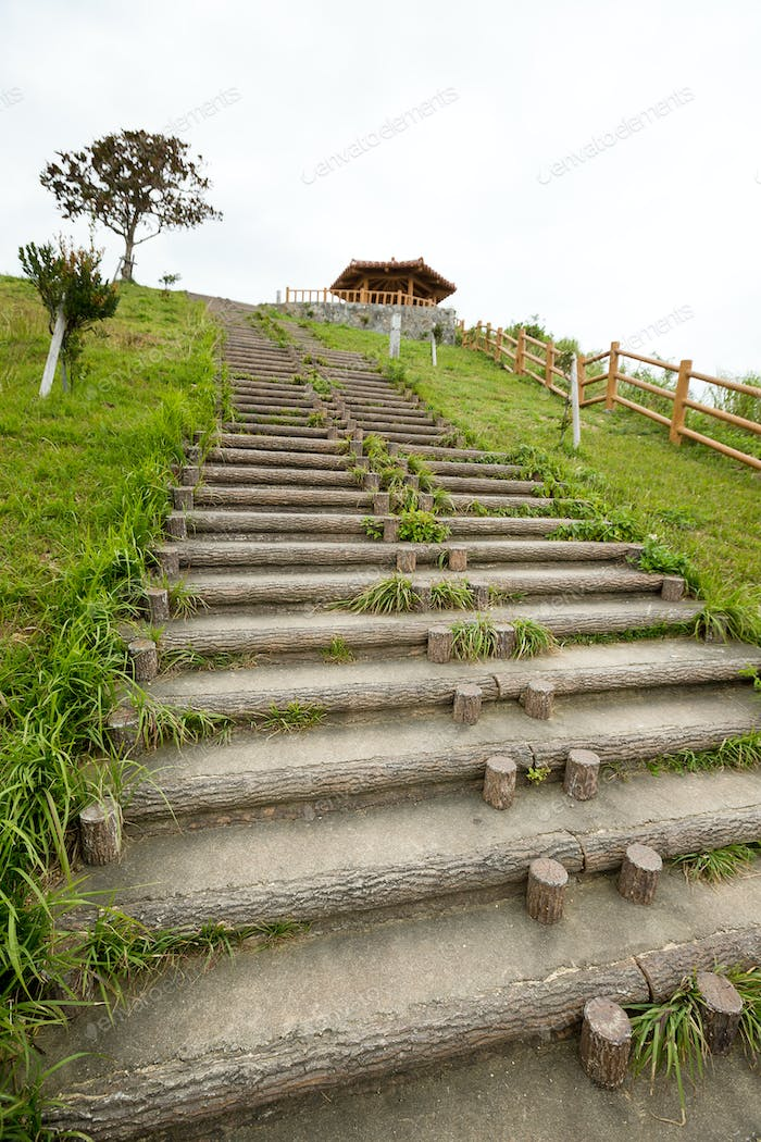 Steps in countryside