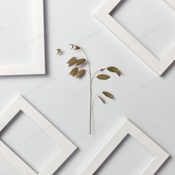 Herbal decorative pattern of leaf branch and empty frames on a light background