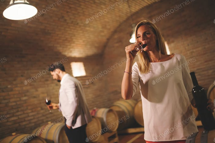 People tasting wine in winery basement