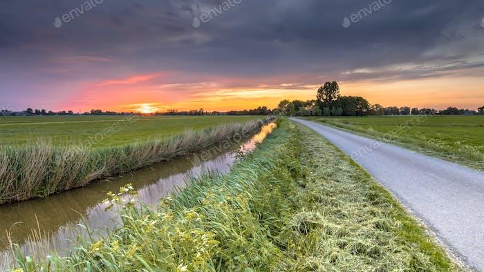 Wide angle agricultural landscape