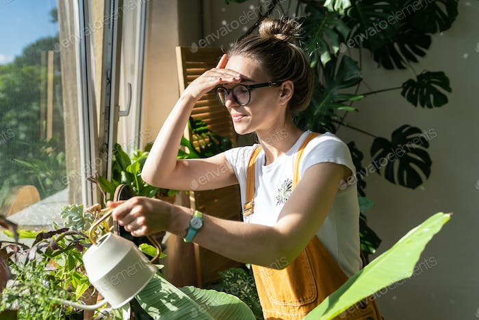 Woman gardener watering plant on windowsill in green house at sunny day. Home gardening, hobby