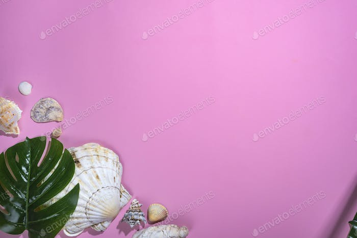Different seashells with starfishes and monstera leafs on pastel violet background.