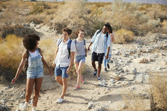 Group Of Young Friends Hiking Through Desert Countryside Together