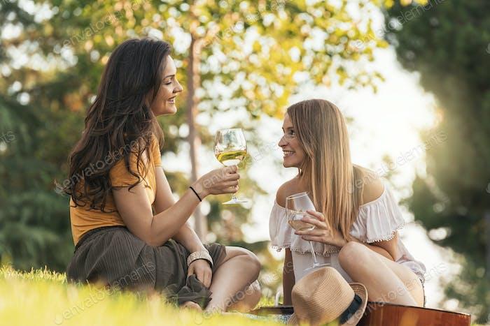 Schöne Frauen trinken Wein im Park.