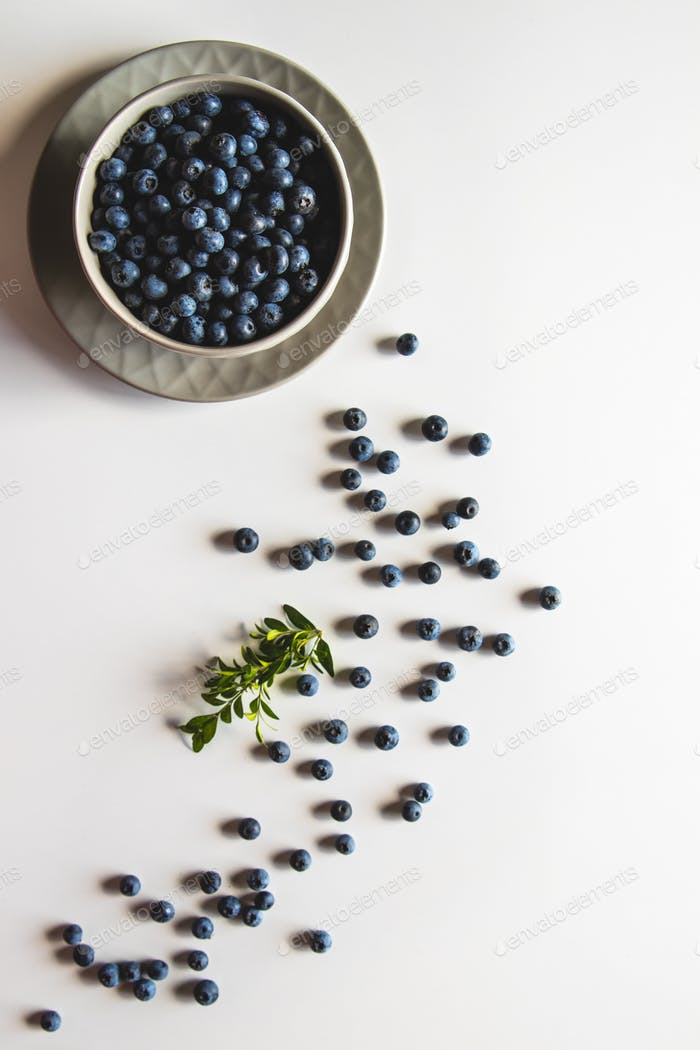 Blueberries in bowl isolated on white background. Healthy food, health