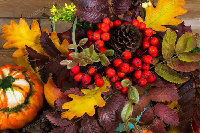 Thanksgiving decoration with pumpkin and red rowan berries, top