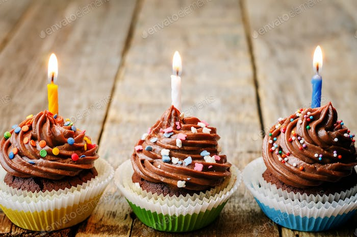 chocolate cupcakes with colorful sprinkles with candles
