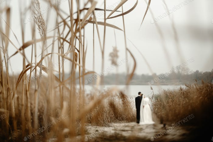 gorgeous bride and stylish groom gently hugging at  beach lake in evening
