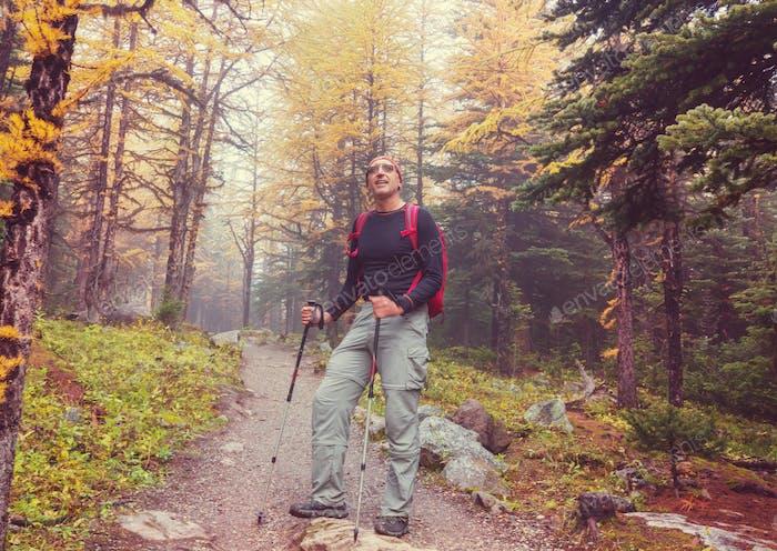 Hike in autumn Canada