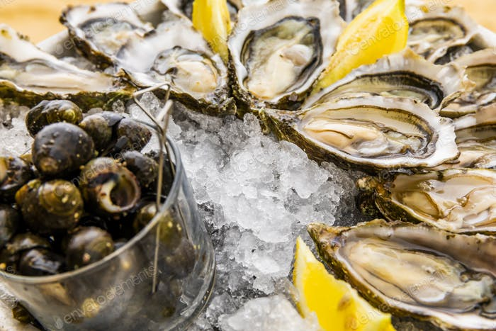 Fresh oysters with lemon, bread and butter