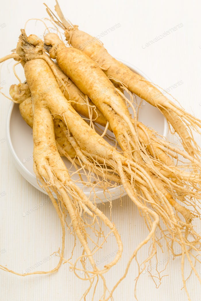 Ginseng with white background