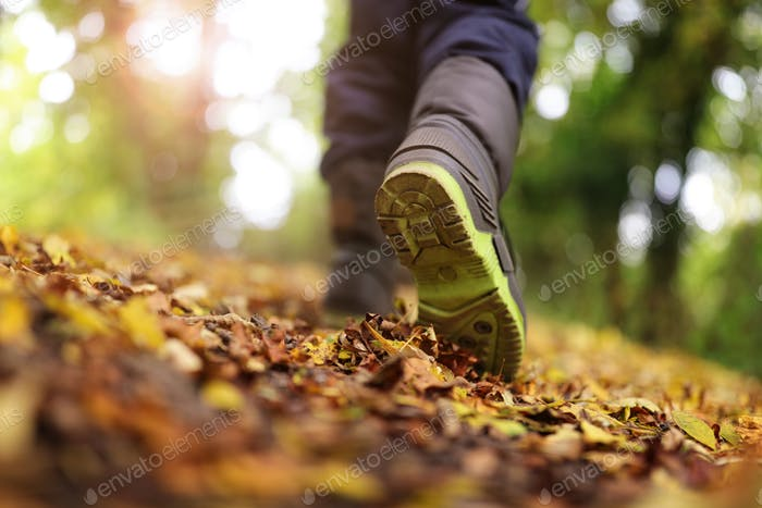 Walking in autumn and winter