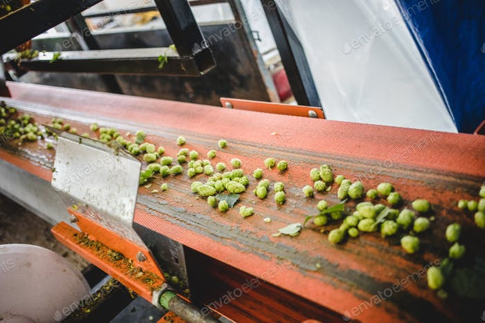 Conveyor with hop