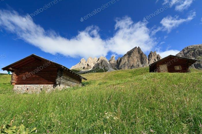 Dolomiti - landscape from Gardena pass