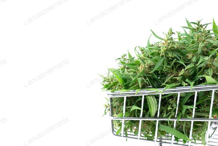 frische Marihuana-Blume im Einkaufswagen isoliert auf weißem Hintergrund