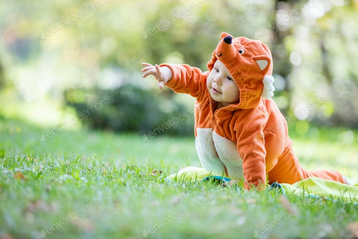 Cute baby girl dressed in fox costume crawling in park
