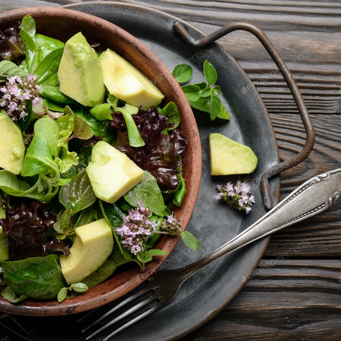 Clay dish with salad of avocado, green and violet lettuce, lamb's lettuce and oregano