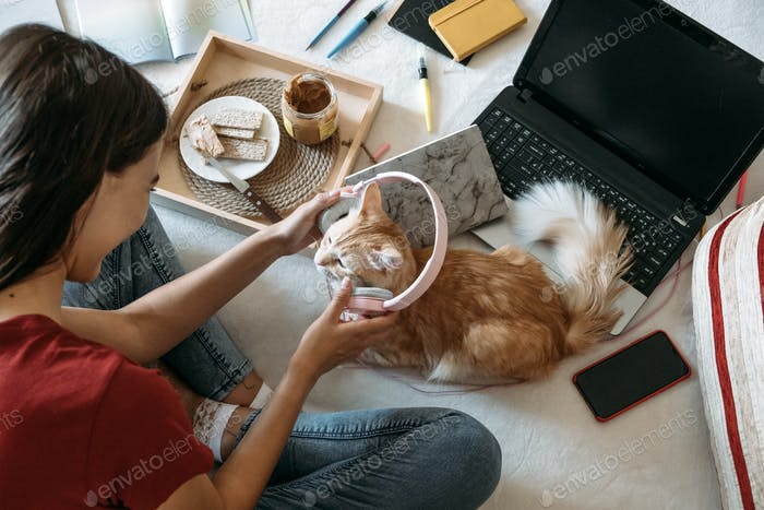 Freelancer young woman working in home office with laptop computer and cat. Remote online working