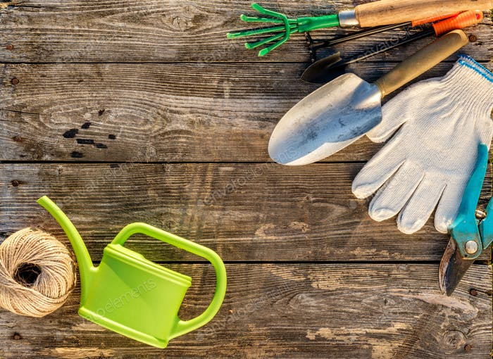 Gardening tools and watering can on wooden background