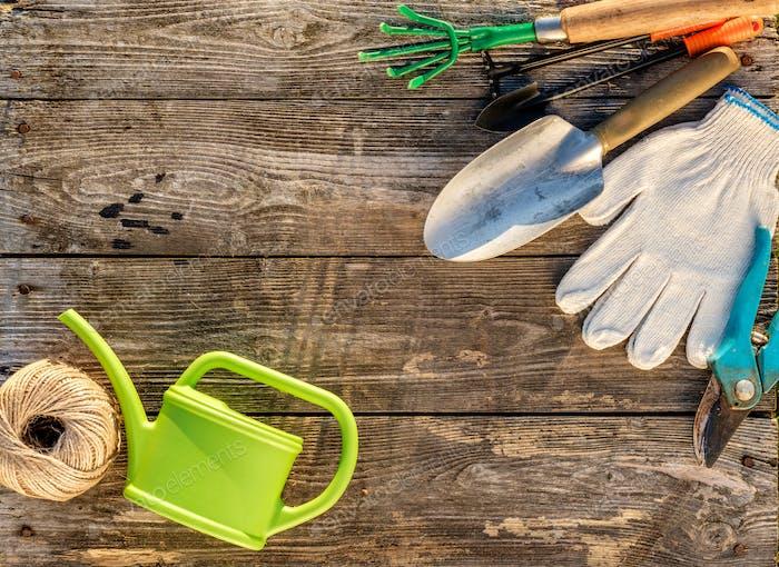 Gartengeräte und Gießkanne auf Holzhintergrund