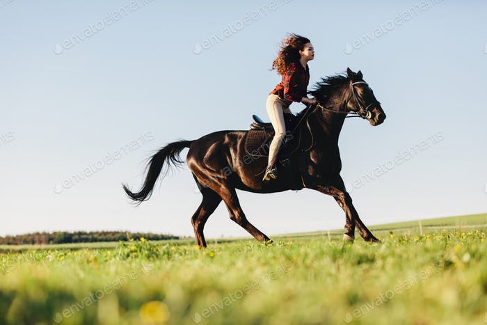 Young girl gallopading on a bay purebred horse.