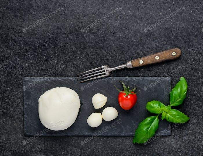 Fresh Juicy Mozzarella Cheese and Copy Space